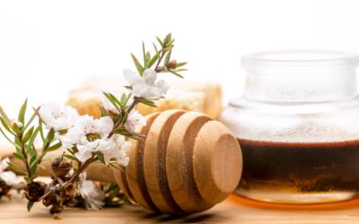 Does Manuka honey help with acne?