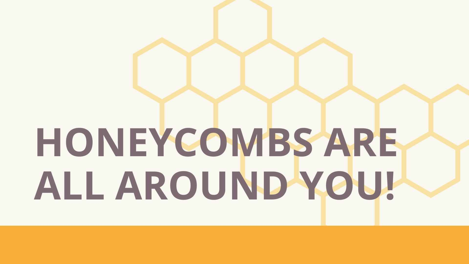 honeycombs are all around you
