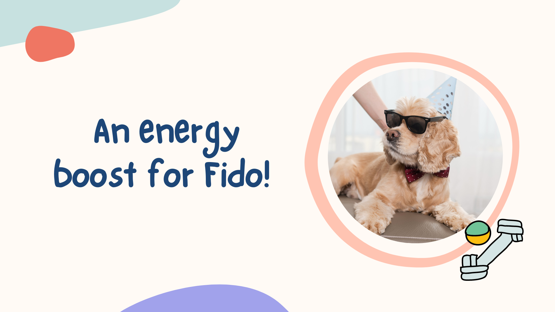 energy boost for dogs
