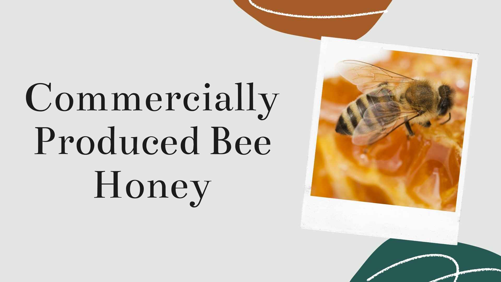 commercially produced honey bee