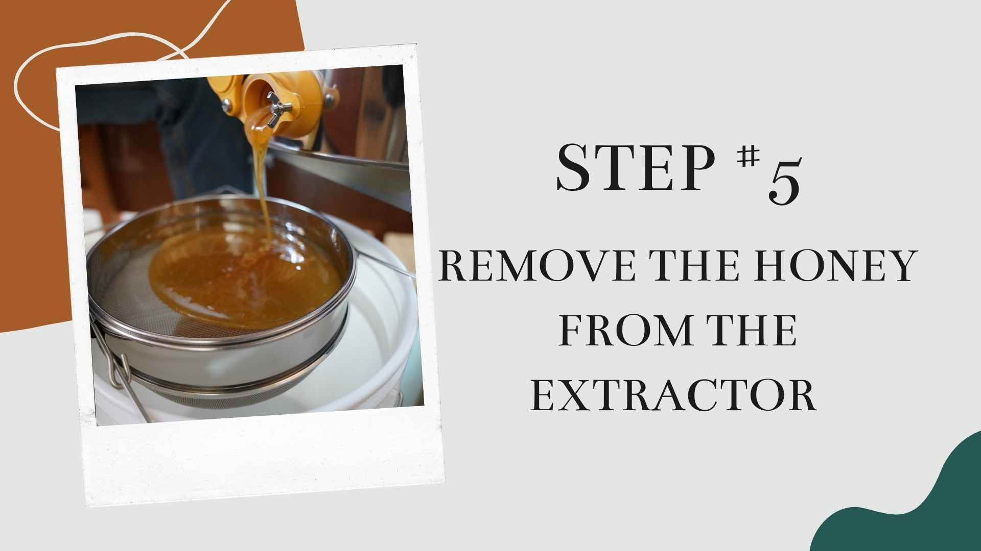 remove the honey from the extractor